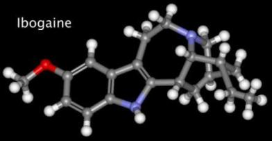 The Case for Studying Ibogaine, the Anti-Addiction Drug